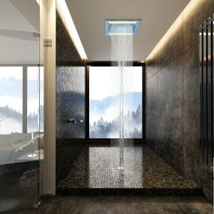 Multifunction Shower - MF-WF