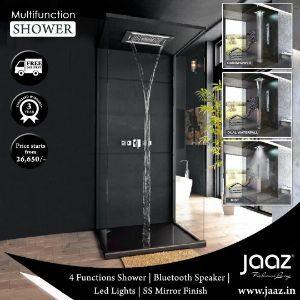 Multifunction Rain Shower